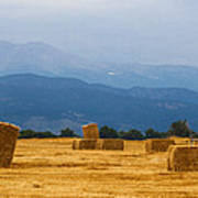 Colorado Agriculture Farming Panorama View Poster