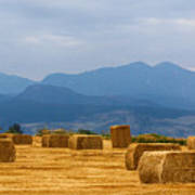 Colorado Agriculture Farming Panorama View Pt 2 Poster