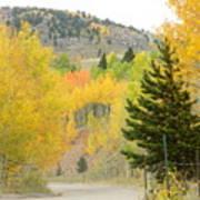 Colorado Colors Poster