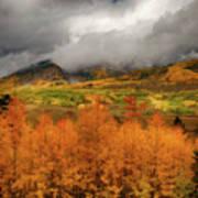 Colorado Fall Colors  Poster