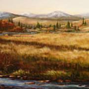 Colorado Meadow Morning Poster