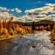 Colorado River In Autumn Poster