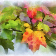Colorful Autumn Leaves - Digital Watercolor Poster