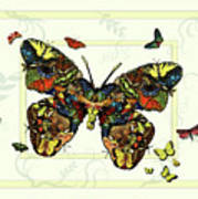 Colorful Butterfly Collage Poster