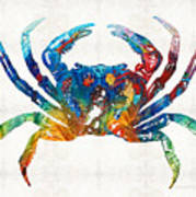 Colorful Crab Art By Sharon Cummings Poster