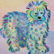 Colorful Dog Poster