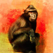 Colorful Expressions Black Monkey Poster