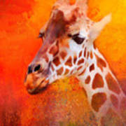Colorful Expressions Giraffe Poster