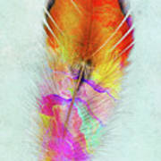Colorful Feather Art Poster