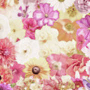 Colorful Floral Background Poster