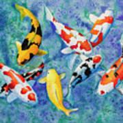 Colorful Koi Poster