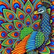 Colorful Paisley Peacock Poster