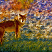 Colorized Death Valley Coyote Poster