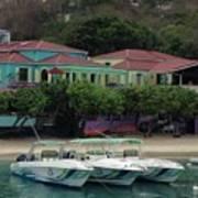 Colors Of St. John Us Virgin Islands Poster