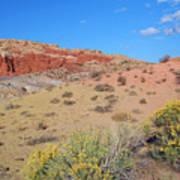 Colors Of The Utah Desert Poster