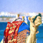 Colourful Camel Poster