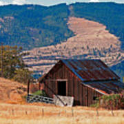 Columbia River Barn Poster by Peter Tellone