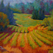 Columbia Valley Vineyard Poster