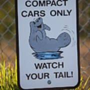 Compact Cars Only Sign Poster