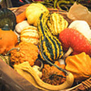 Composition Of Various Gourds In A Basket With Vignetting Poster