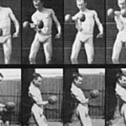 Consecutive Images Of Man Lifting Poster by Everett