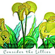 Consider The Lillies Poster