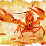 Cooked Lobster On Parchment Paper Poster