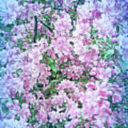 Cool Blue Apple Blossoms Poster