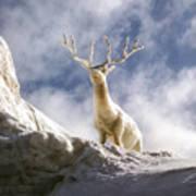 Cool Deer Poster