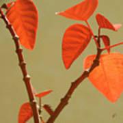 Copper Plant Poster