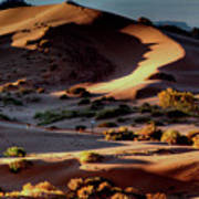 Coral Pink Sand Dunes Dawn Poster