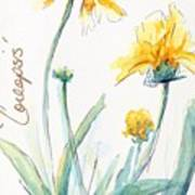 Coreopsis Poster