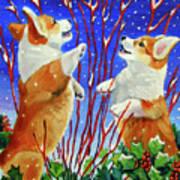 Corgi Snow Puppies Poster