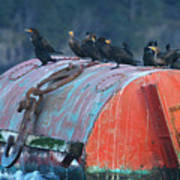 Cormorants On A Barrel Poster