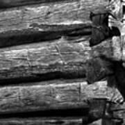 Corner-logs Poster