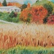 Cornfield In Autumn Poster