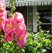Cottage Garden.  Poster