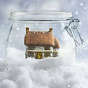 Cottage In Snow Poster
