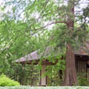 Cottage Orange Island  Louisiana  Poster