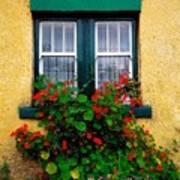 Cottage Window, Co Antrim, Ireland Poster