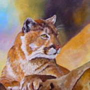 Cougar Wildlife Poster