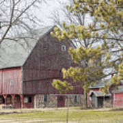 Country Barn With Pine Tree Poster