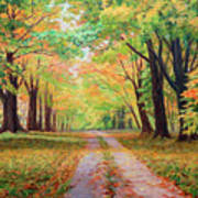 Country Lane - A Walk In Autumn Poster