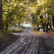 Country Lane In Autumn 4 Poster