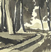 Country Lane In Evening Shadow Poster