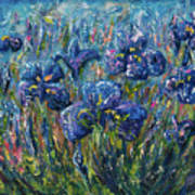 Countryside Irises Oil Painting With Palette Knife Poster