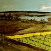 countryside/VINEYARD Poster by Marie Bulger