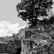 Countryside Of Italy Bnw 2 Poster