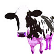 Cow In A White World Poster