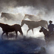 Cowboy Rounding Up Four Horses Poster